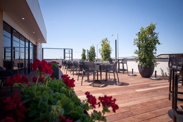 The Telegraph Hotel Roof Top Terrace